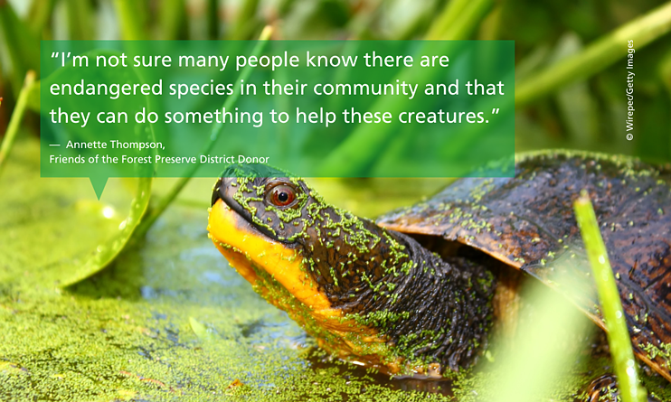 Donor-Annette-Thompson-quote-endangered-Blandings-turtle-support-©- Wirepec-Getty-Images