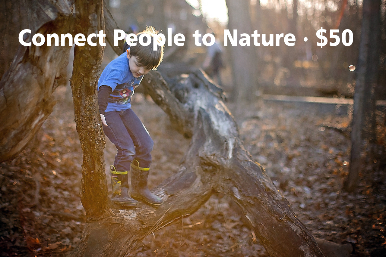 donate-connect-people-to-nature-2