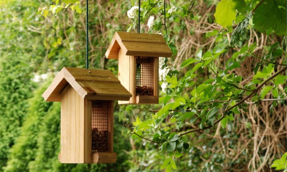 two-wooden-bird-feeders-hang-in-tree