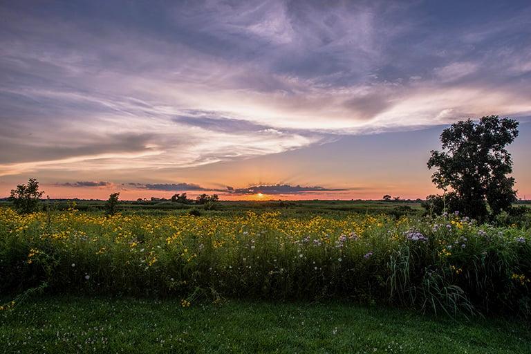 Springbrook-Prairie-sunset-home-feature