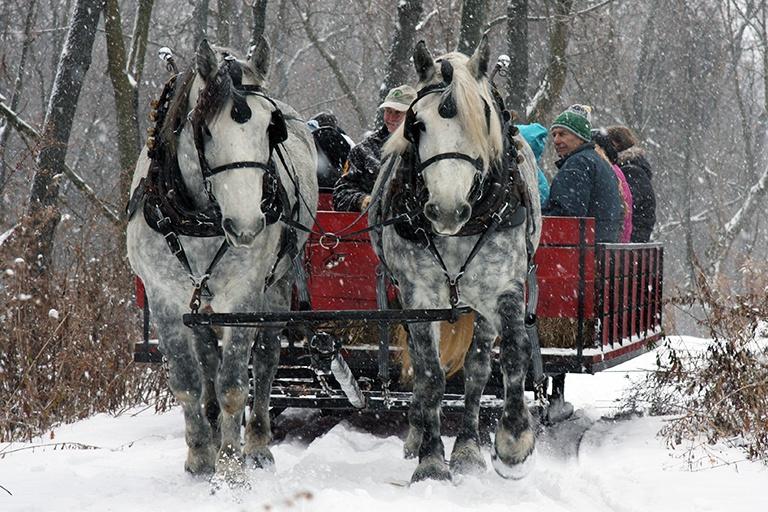 sleigh-rides-holiday-program