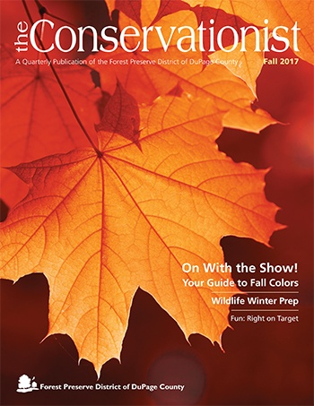 cover of fall 2017 Conservationist