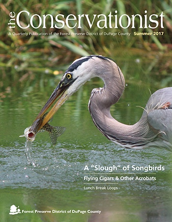 cover of summer 2017 Conservationist
