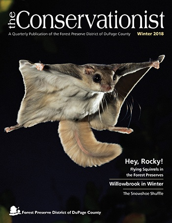 cover of winter 2018 Conservationist