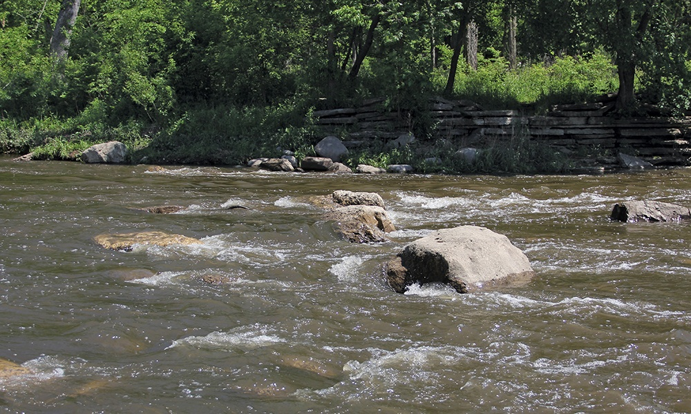 west-branch-dupage-river-warrenville-grove