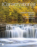 cover of the fall 2019 Conservationist