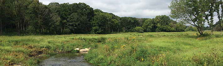 spring-brook-st-james-farm-spring-conservationist