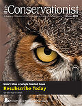 conservationist-2020-winter-cover