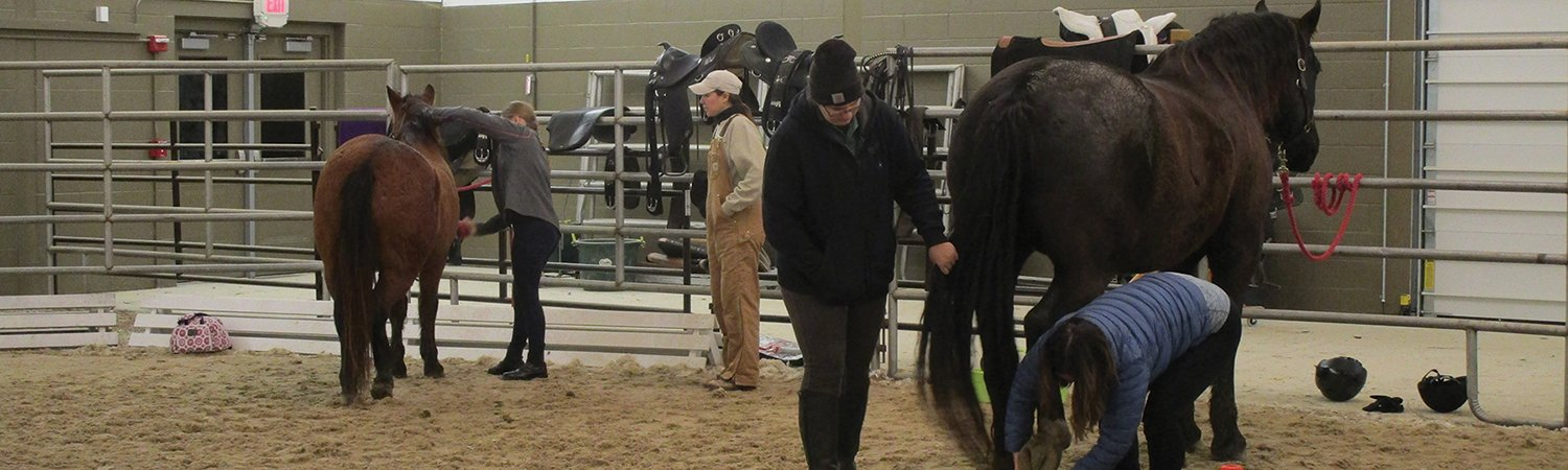 students working with their horses at the indoor riding arena at St. James Farm