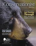 black bear on cover of winter 2015 Conservationist