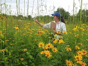 cindy-crosby-planting-for-pollinators-speaker