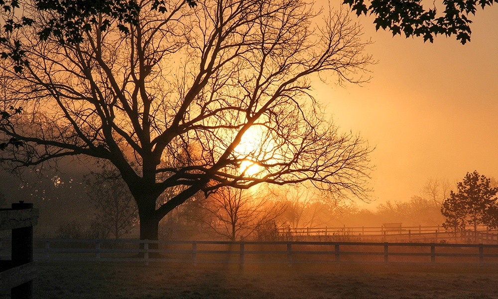 Danada-hazy-sunrise