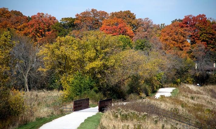 Meacham-Grove-fall.jpg