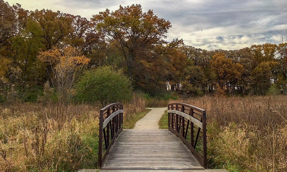 Oldfield-Oaks-bridge