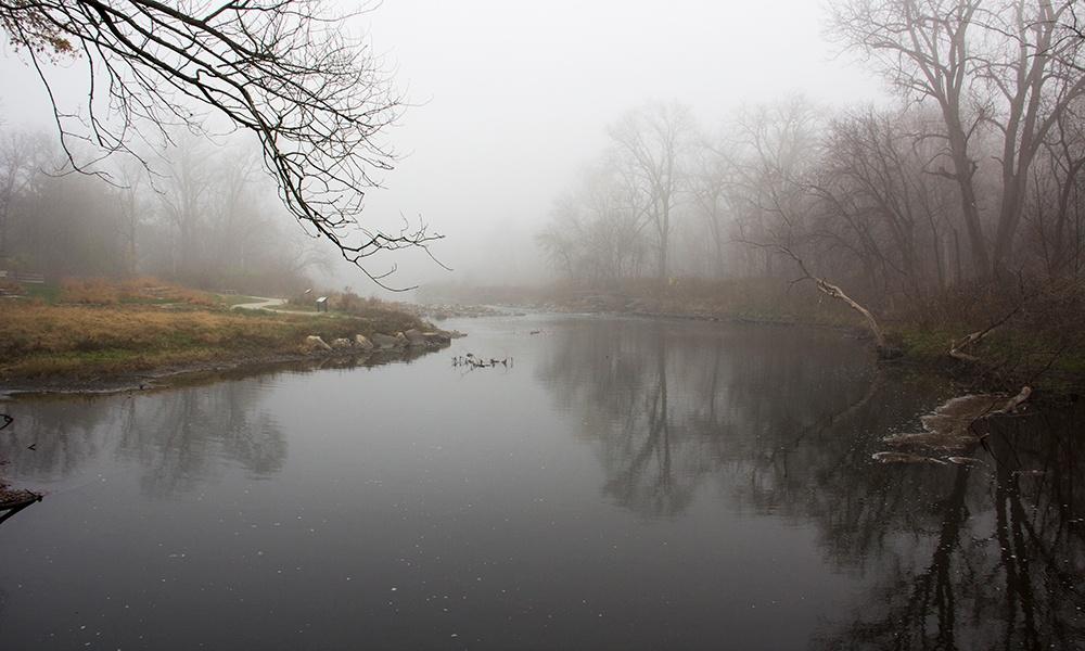 Warrenville-Grove-fog-1000x600