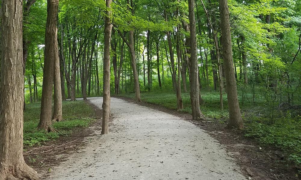 West-DuPage-Woods-Trail