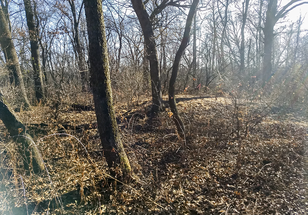 Winfield-Mounds-13422