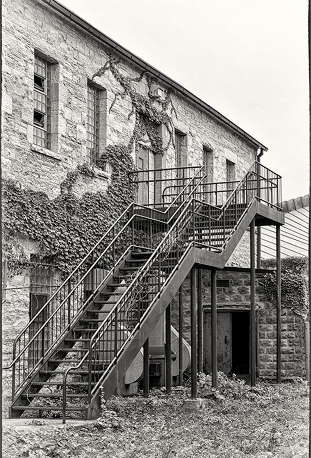 5-the-back-stairs-fran-piepenbrink