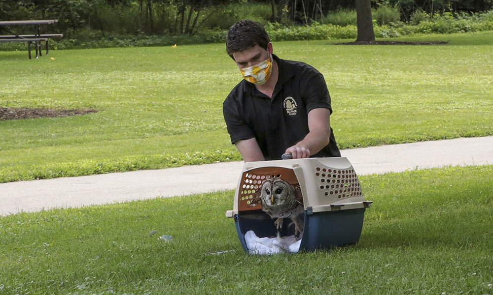 barred-owl-cage