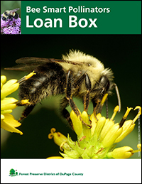 bee-smart-pollinators-loan-box-cover-fpd