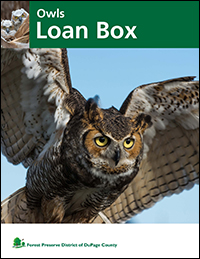 owls-loan-box-cover-fpd