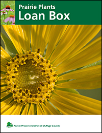 prairie-plants-loan-box-cover-fpd