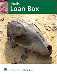 skulls-loan-box-cover-fpd