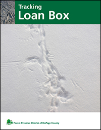tracking-loan-box-cover-fpd