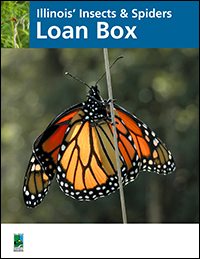 illinois-insects-loan-box-idnr-cover