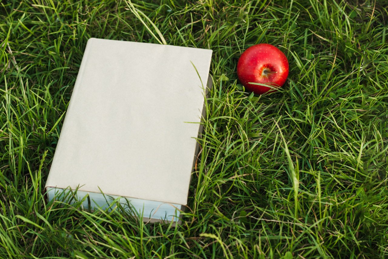 apple-on-grass-teacher-resources-feature