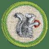 mammal-study-badge
