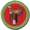 scout-horsemanship-badge