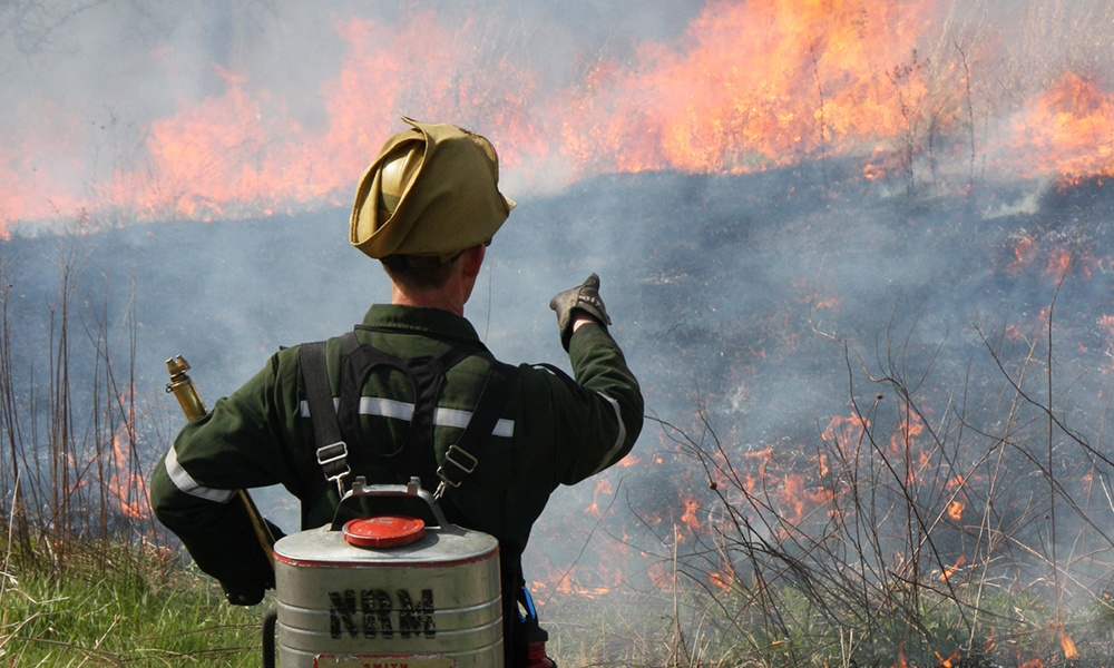prescribed-burn-blackwell-forest-preserve