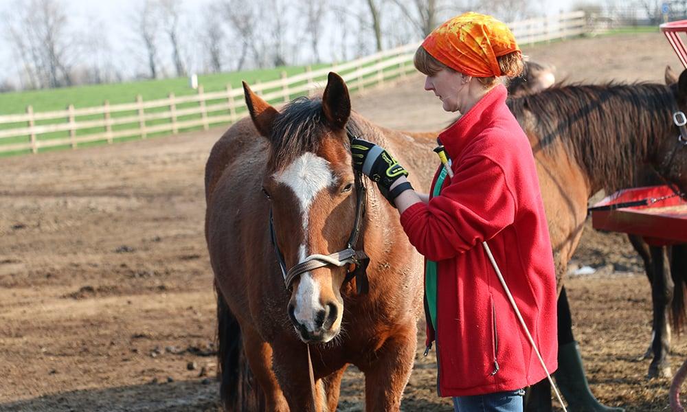 danada-volunteer-deb-yatka-halter-and-horse-feature