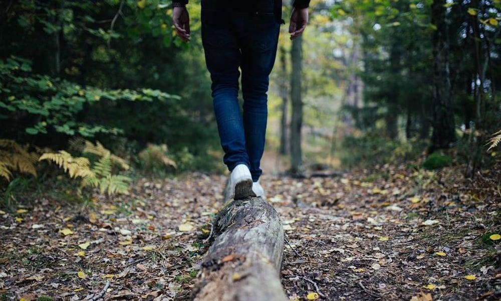 walk-on-log
