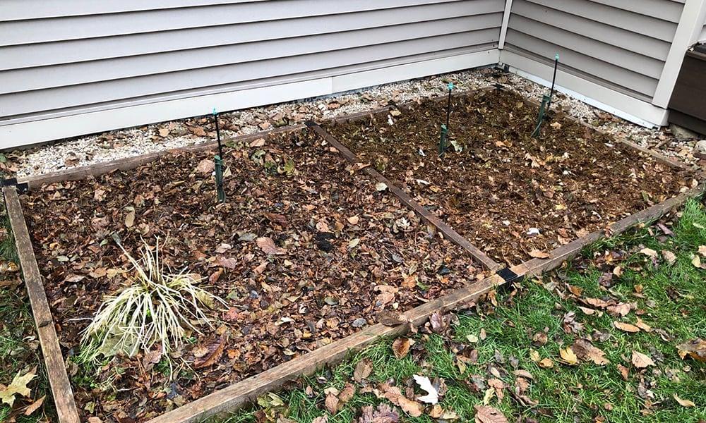Mulched-garden-bed