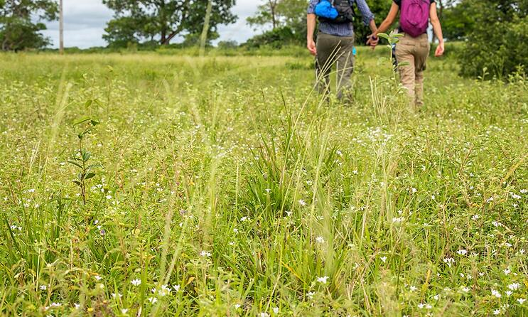 couple-walk-through-prairie-iStock_000035731456.jpg