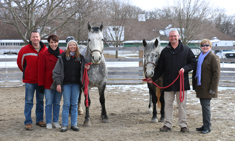forest-preserve-district-friends-donation-horses