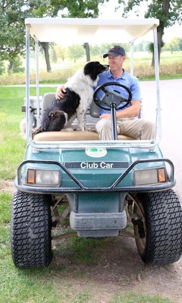 golf-course-supervisor-border-collie