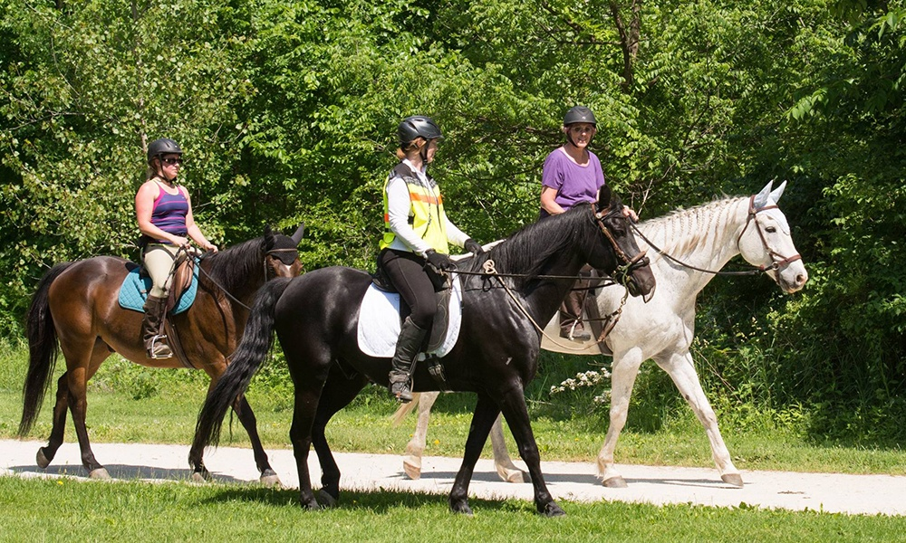 horseback-riders-on-trail