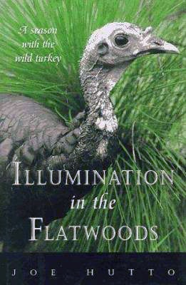 natural-world-book-club-illumination-in-the-flatwoods