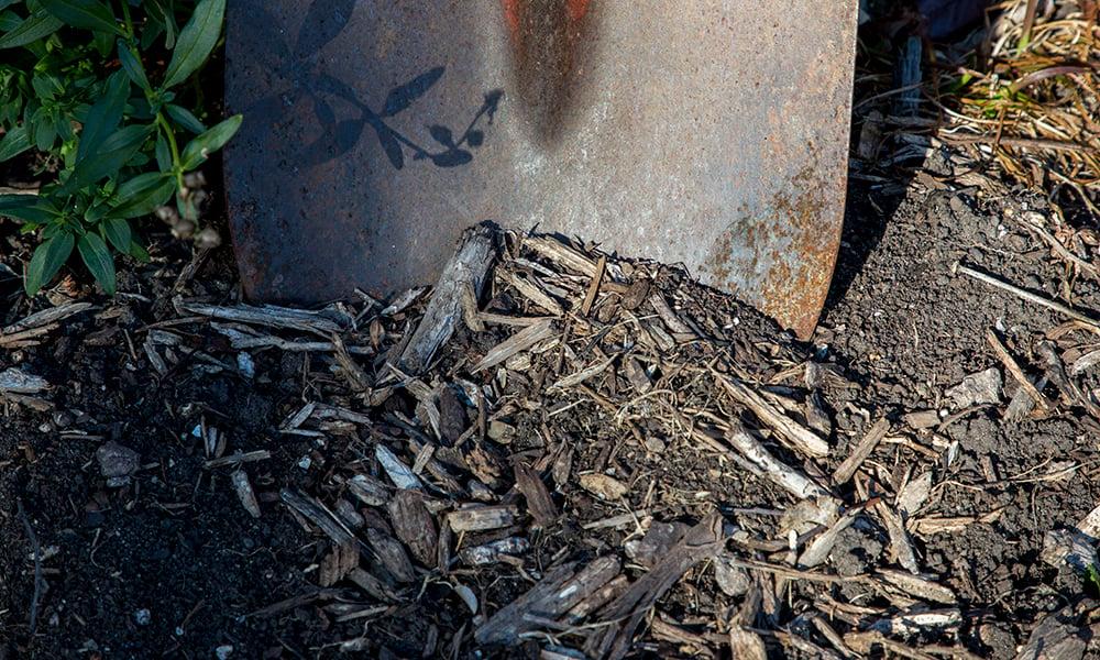 soil-shovel-1000x600-WG3A7973