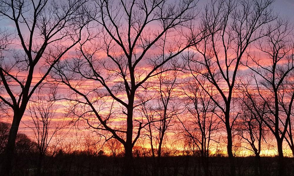 Debby-Blackwell-nursery-sunset