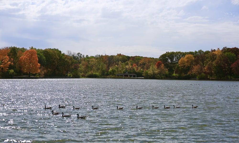 Herrick-Lake-mcleod
