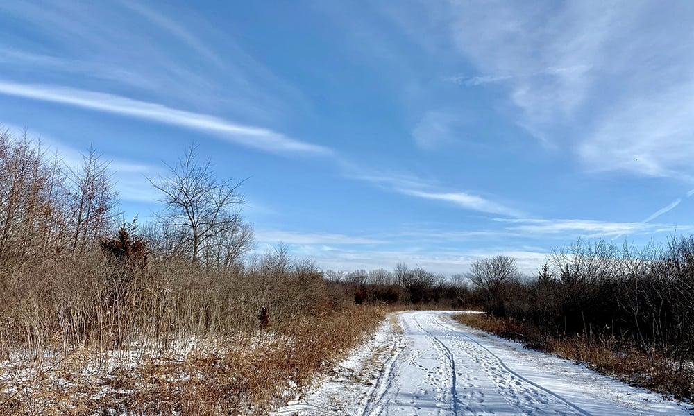 trail-winter