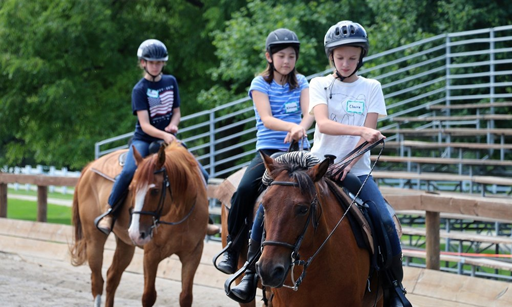 Places To Go Danada Equestrian Center