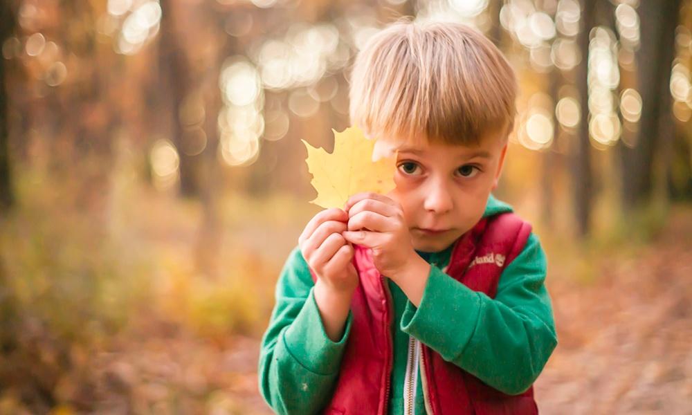 boy-holds-leaf-take5-opt-outside.jpg